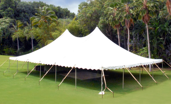 40 x 60 Century Tents in front of Palm Trees - Kauai Wedding Tent Rental