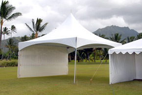 20 x 20 Marquee Tent with net wall - Event Tent Rental
